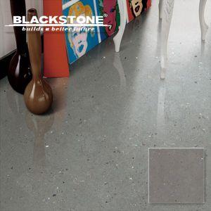 Tegel 600*600 van de Vloer van het Porselein van de Reeks van Venti van de kwaliteit de Inkjet Verglaasde (11650)