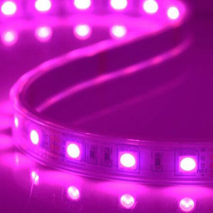 Decoration Digital 5050 SMD DC12V RGB LED Strip Light