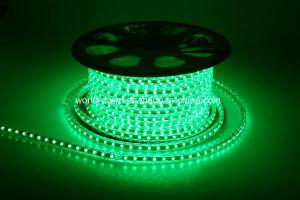 110V, 220V Corda de LED de alto brilho de luz para a cor verde