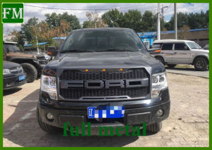 2009 2010 2011 2012 2013 2014 Ford F-150 ABS parrilla