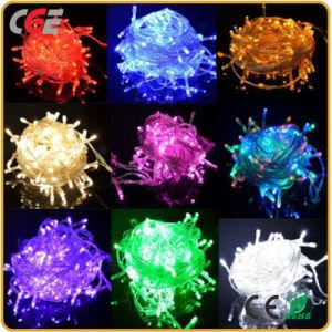 Indicatore luminoso blu alimentato della decorazione di festa dell'indicatore luminoso leggiadramente di bassa tensione LED /LED