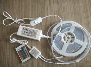 Venta caliente TIRA DE LEDS con Blister (SMD3528/SMD5050)