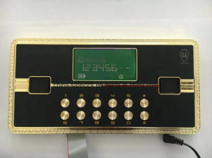 Home Electronic Locks with LCD Display