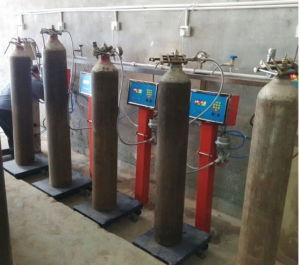 Singola scala del materiale da otturazione del tubo flessibile GPL per la stazione di servizio di GPL