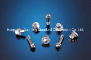 Tornillo de acero inoxidable de alta calidad (series de productos: aparato eléctrico) 3