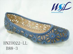 Les chaussures pour femmes (HNZ0022 LLB88-3)