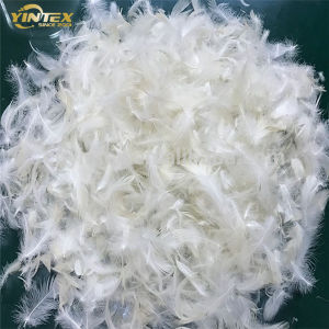 Venda por grosso de enchimento de almofadas lavados barata Pato Branco Para Baixo