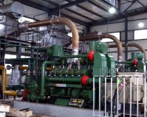 Caliente la venta de Gas de hulla de la planta de generación de energía con la CHP