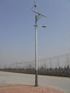 사용 바람 태양 잡종 발전기가 500W에 의하여 집으로 돌아온다