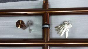 Fechamento de pega de vidro de aço inoxidável (FS-1801)
