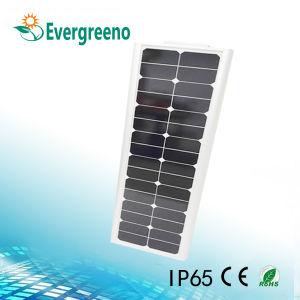 /Integrado en una sola calle luz LED de energía solar