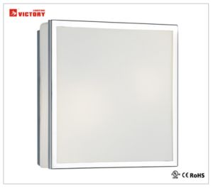 Simplism LEDの正方形のガラス天井の照明