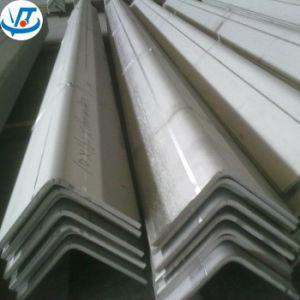 310S roestvrij staal V & de Types van L van de Staaf van de Hoek van het Staal met 6m Lengte