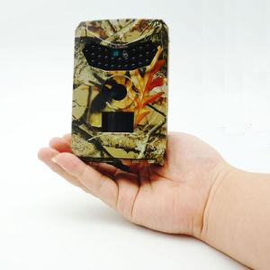 Rastro digital sobre el Escultismo femenino la visión nocturna Cámara Cl37-0035 de caza