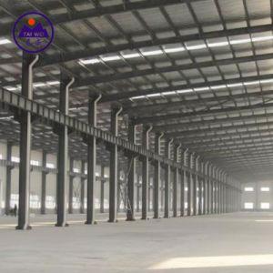 Bouw van het Staal van de Bouw van het staal de PrefabHuis Geprefabriceerde (tw-KA124)