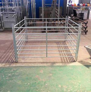 Comitati portatili galvanizzati della rete fissa dell'iarda delle pecore del bestiame