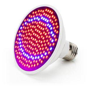 Os sistemas de cultivo hidrop ico Vermelho com efeito de luz azul acende a lâmpada LED