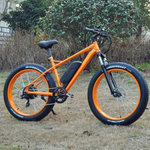 Grande potência 8divertido 48V750W bicicleta eléctrica de Montanha