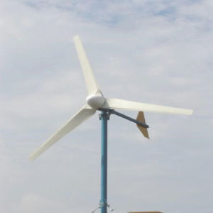 3000W Tanfon Sistema de Energia Eólica Turbina Eólica