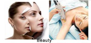 Lâmpada de xénon pulsada para a máquina da soldadura de laser/da remoção cabelo da estaca/laser (Xe-7*110*130)