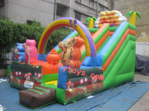 2011SGS Arco inflable diapositiva (SS201010)
