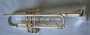 Trompette professionnelle / trompette haute qualité / trompettes martelées à la main (TR-800S)
