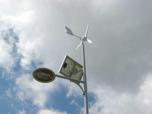 600W het Systeem van de Macht van Genarator van de Turbine van de wind