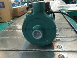 1DK-14 intérieur de la pompe à eau centrifuge 0,37 kw/0,55 HP