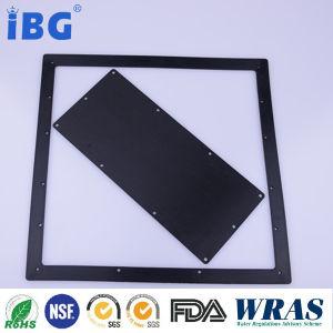 Pakking de Van uitstekende kwaliteit van de Fabriek van Ibg Rubber
