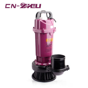 2HP Grande Potência Qdx Jardim do motor da bomba eléctrica de água Submersível Preço a partir de China