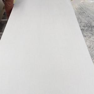 Oxyde de magnésium étanche Conseil/plaques de plâtre de ciment pour l'externe et le mur intérieur