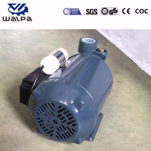 De Pomp van het water Elektrische 220V 50Hz met de Drijvende kracht van het Messing