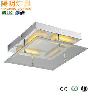 Energie - Licht van het Plafond van de besparing zet het Europese/de Vloed van het Plafond van het Comité vlak LEIDENE Lamp op