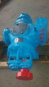 Doppelte Schrauben-Pumpe mit SGS-Bescheinigung