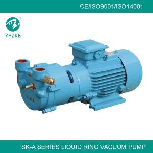 Sk-3c de vloeibare Vacuümpomp van de Ring voor EPS Machine