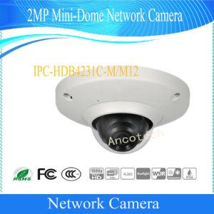 IP van de Veiligheid van het Netwerk van de mini-Koepel van Dahua 2MP de Mobiele Camera van de Auto (ipc-hdb4231c-m)