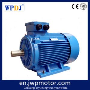 90квт 2970об/мин 3 фазы индукции Бесщеточный электродвигатель переменного тока