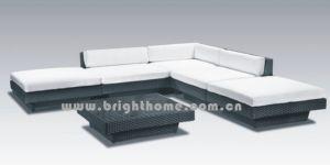 PEの藤の屋外の家具(BG-110)