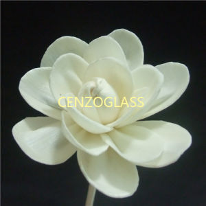 ツバキDia 5cmの香りの花の拡散器のSolaの花(JMC-124)