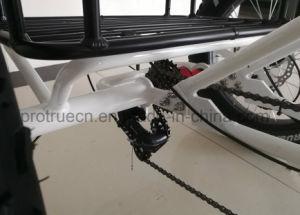Trike /Eelctric 3の車輪の自転車の/Electricの電気自転車