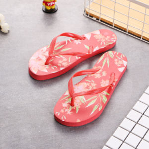 Patins en caoutchouc/EVA patin/chinois/couleur de patin patin/pantoufle bon marché