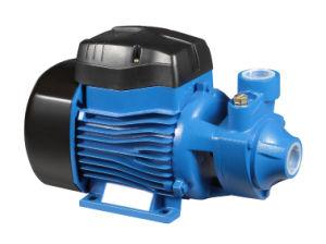 Pompa ad acqua elettrica di rame del collegare Qb60 di 100%