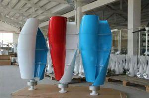 Neue Art kleiner Maglev vertikaler Wind Tubine Generator 12V 24V 200W