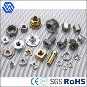 Tous les types de matériel différents Vis et écrou de la Chine Fournisseur d'écrous en acier