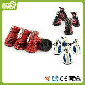 Zebra-Streifen Hundegehende Schuhe (HN-PC770)