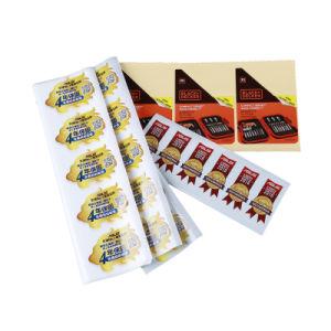 A impressão de catálogos Brochura de Impressão imprimir papel de volta no menu Impressão de livros
