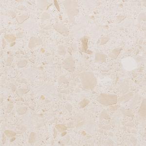 De Rustieke Matte Ceramiektegel van het Bouwmateriaal voor de Decoratie van de Vloer