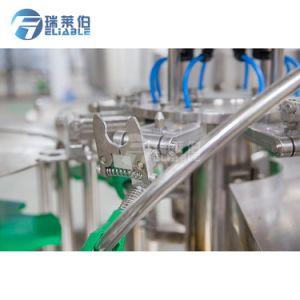 Betrouwbaar Automatisch Vloeibaar Water 3 in 1 het Vullen van de Ernst van de Fles Machine