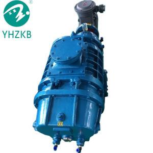 Racines Yulong haut taux de pompage pompe à vide avec un bon prix