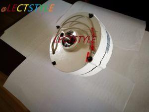 판매에 12V 24V 50W 영구 자석 발전기